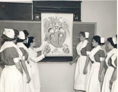 piedmont nurses